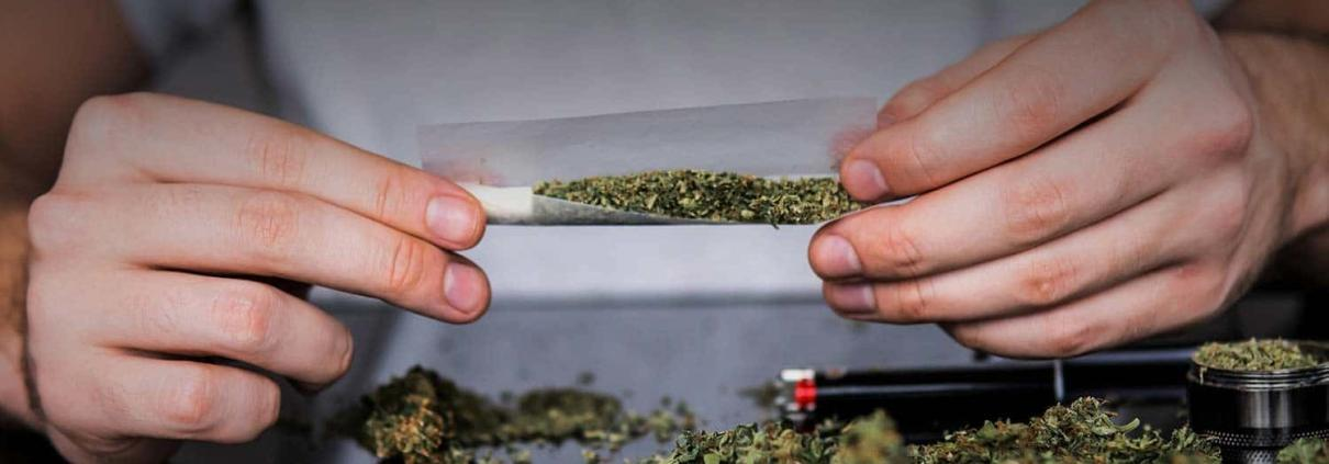 Close up of hands rolling a weed, pot, marijuana cannabis flower joint